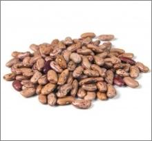 biofortified bean