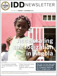 Accelerating salt iodization in Angola