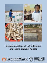 Situation analysis of salt iodization and iodine status in Angola