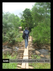 Sierra Leone Micronutrient Survey Report